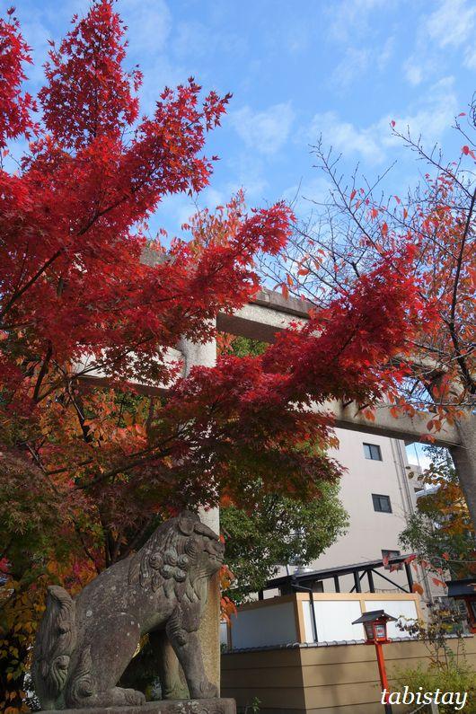 京都 安井金比羅